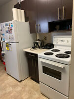 2 b/r apartment for Sublet starting November 1st