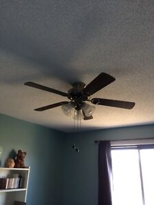 Two Ceiling Fans with lights