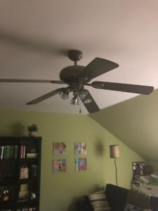 Ventilateur et luminaire Westinghouse