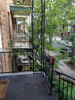 4 1/2 PLATEAU MONT-ROYAL (LAURIER) SUPER SITUATION : 930 $