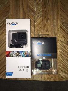 GoPro Hero+ W/ Wifi Remote