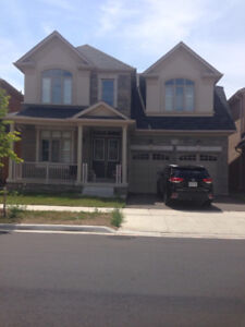 For rent Luxurious furnished 5 bedroom detached in Oakville