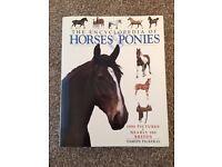 Encyclopaedia of horses and ponies