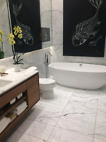 Complete Bathroom Renovation Condo's and Houses