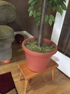Artificial/Fake tree/plant - Excellent condition London Ontario image 2