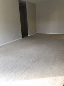 1 Bedroom Apartment available October 1st