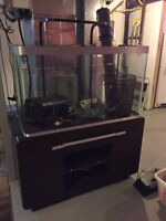 Fish tank, stand, filter
