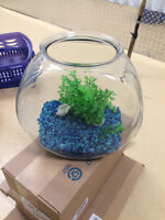 Glass Fish Bowl with Colorful Rocks & Plastic Plants. Clean Ins