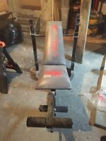 Weight bench with 400 pounds of weights