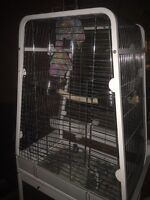 Huge parrot cage 250 or best offer