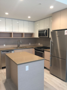 High End Apartment overlooking SFU mountain area Burnaby