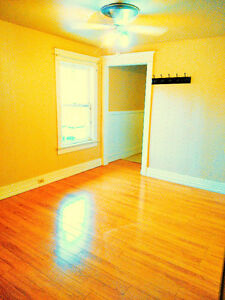(Downtown) Whole 2nd Floor, 2 Bedrooms, Deck, Private Entry!