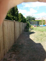 Custom fence, deck and gazebo building, home renos, painting, et