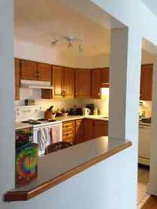 Room in Sandy Hill apartment for Nov/Dec London Ontario image 3