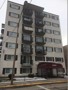 Appartement 3 ½ pièces  spacieux et sécuritaire à louer à Verdun