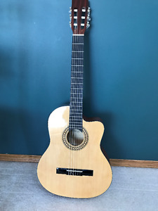 New Beaver Creek Nylon String 901 Series Classical-Elec Guitar,
