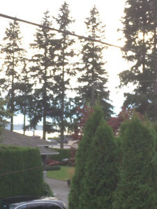 **ATTN: BUILDERS!  PRIME LOCATION in DUNDARAVE** North Shore Greater Vancouver Area image 9