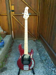 Fame mn 500 5 string bass (hand made in Germany)