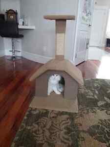 Playhouse with scratch Stand for Cats/Kittens