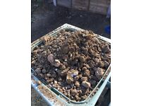 Garden soil free collection