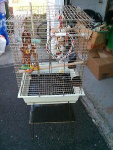 Grande Cage Hagen pour Petit Perroquet sur pied avec accessoires