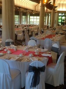 Successful Wedding Decor and Chair Cover Business - Ready to Go!
