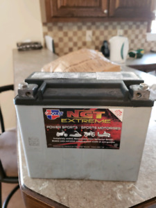Power sports battery