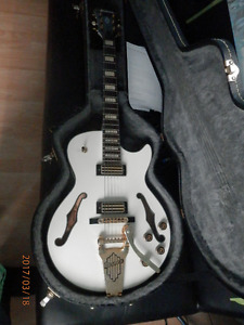 Ibanez AGR73 with case