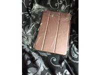 iPad mini 4 Rose Gold cover