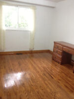 room available Jane & Shepperd everything included