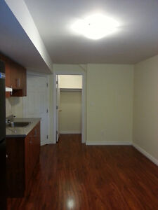 A Basement Bachelor Apartment at Hwy50 & Castle Oak crossing