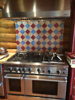 DCS gas 48 Inch High End Range/Stove RGS-485GDSS-L - Like New