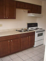 1 Bedroom Apt Main Floor Updated Dec. 1 $595 incl