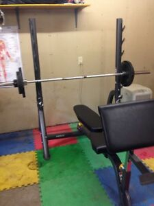 Hoist 5170 fold up Olympic combo bench