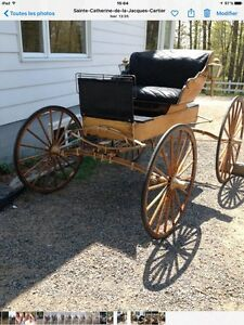 Voiture cheval buggy