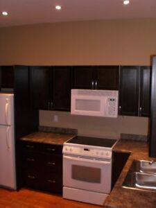 March 01st - Immaculate 2BR Main Floor Apt Exc Ham Location