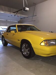 1993 Ford Mustang Feature Car