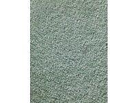Sage Green Carpet