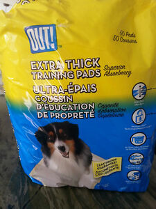 Medicine and Diapers for Older Dog