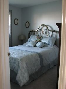 Comforter Set - like new!
