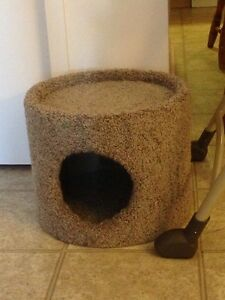 Cat house, cat food, cat treats