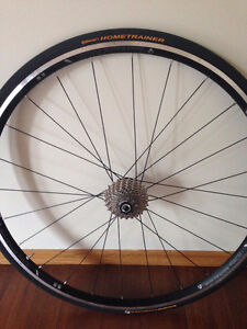 Reduced priceBONTRAGER  home Training Cycling Wheel and cassette