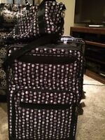 Skyway polka dot luggage