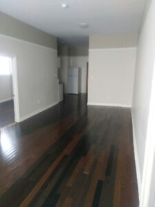 Renovated large 3 bedrooms apt for rent in downtown whitby