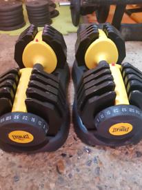 Everlast adjustable dummbells 25kg each 50kg pair