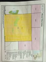 200 acre gold claim