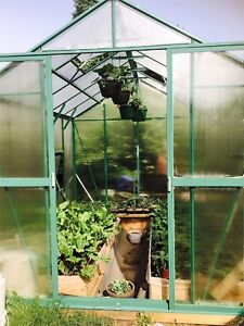 Brand New Aluminum Polycarbonate Greenhouses