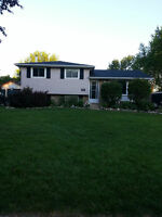 Beautiful Petrolia 4 Level Split with In-Ground Pool and Garage