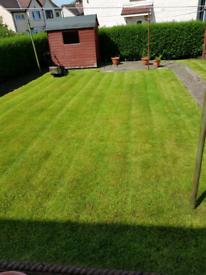 Grass cutting hedge cutting garden maintenance & makeover