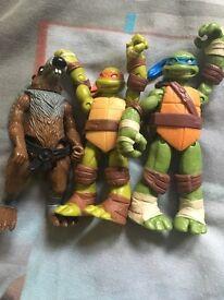 Turtle figures